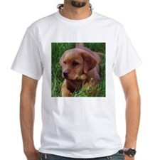 Fox Red Lab Pup Shirt