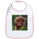 Fox Red Labrador Puppy Bib