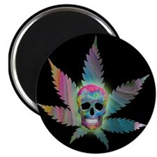 Painted Skull Leaf on black Magnets