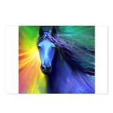 Fresian horse 1 Postcards (Package of 8)