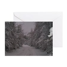 Winter Woods Greeting Cards (Pk of 10)