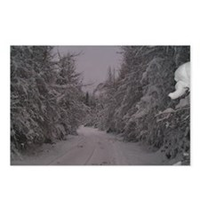 Winter Woods Postcards (Package of 8)