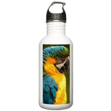 macaw, yellow and gold Water Bottle
