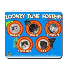 Looney Tune Fosters Mousepad
