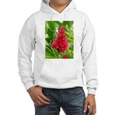 Torch Red Ginger Hoodie