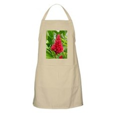 Torch Red Ginger BBQ Apron