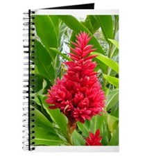 Torch Red Ginger Journal