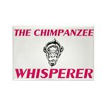 Clumber Spaniel Women's Tracksuit