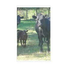 black angus Rectangle Decal