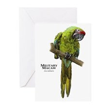Military Macaw Greeting Cards (Pk of 20)