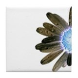Funky Daisy Tile Coaster