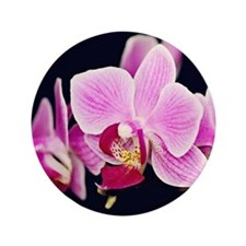 "Pink Orchids 3.5"" Button (100 pack)"
