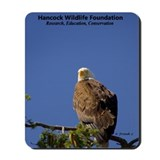 Ma Sidney - Hancock Wildlife Foundation Mouse Pad