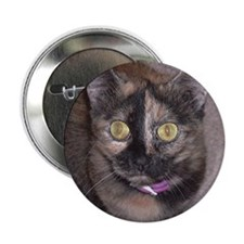 Tort Calico Button