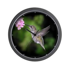 Beautiful Hummingbird Wall Clock