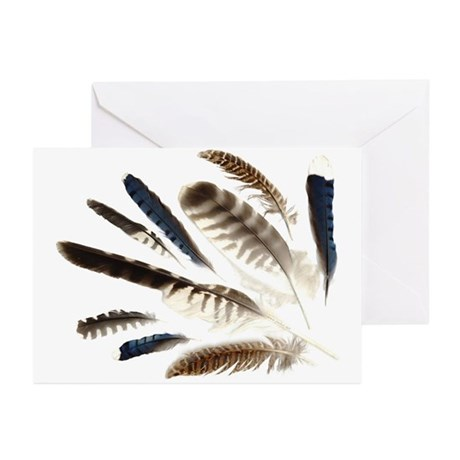 Feathers Greeting Cards (Pk of 10)