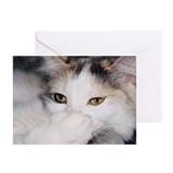 Isabel Greeting Cards (Pk of 10)