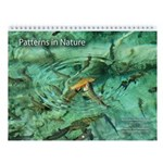 """Patterns in Nature"" Wall Calendar"