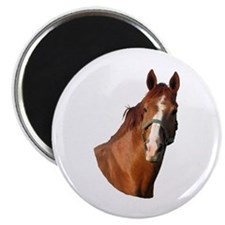"""Warmblood 2"" 2.25"" Magnet (100 pack)"