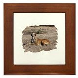 Framed Tile - Happy galgo