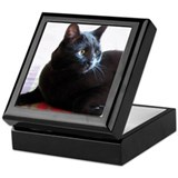 Black Cat Beauty Keepsake Box