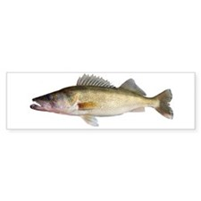 Perfect Walleye 2 Bumper Bumper Sticker