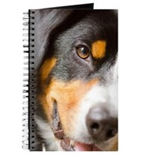 I've got My Eye on You! Entlebucher Journal