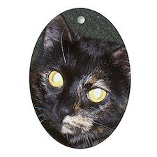 Dark Tort Oval Ornament