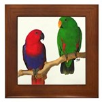 Eclectus Pair Digital Oil Framed Tile