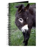 Black Donkey Journal