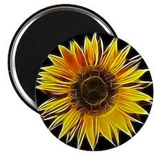 Fractal Sunflower Magnets