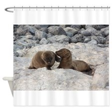 Baby Sea Lions Galapagos Shower Curtain