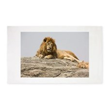 Male Lion on Rock 3'x5' Area Rug
