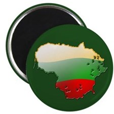 """Lithuania Bubble Map"" Magnet"