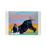 Boston Bull Terrier Rectangle Magnet (100 pack)