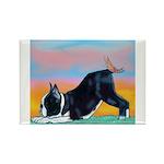 Boston Bull Terrier Rectangle Magnet (10 pack)