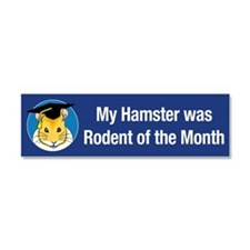 Hamster of the month Car Magnet 10 x 3