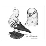 Warsaw Butterfly Pigeon Small Poster