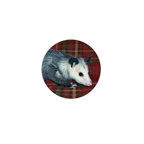 Possum on Plaid Mini Button