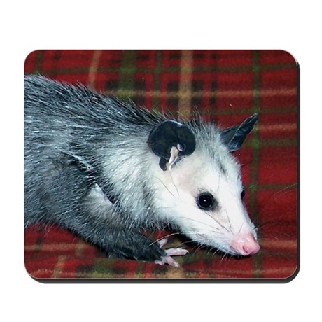 Possum on Plaid Mousepad