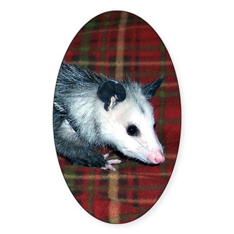 Possum on Plaid Oval Sticker