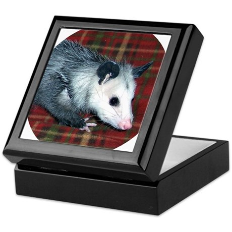 Possum on Plaid Keepsake Box