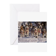 Iditarod huskies Greeting Cards