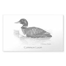 Common Loon Decal