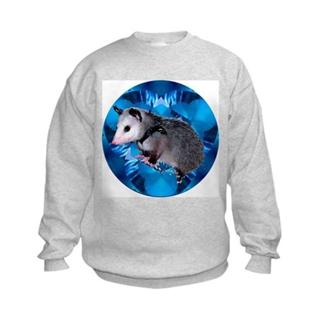 Baby Possum Kaleidoscope Kids Sweatshirt