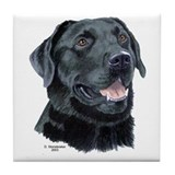 Tejas Black Labrador Decorative Tile