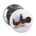 Red Leghorn Chickens Button