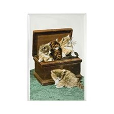 4 Victorian Kittens Rectangle Magnet