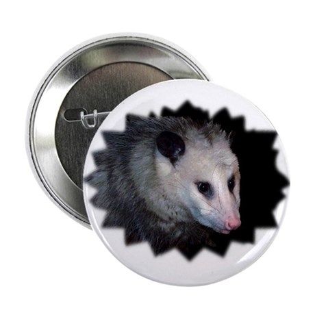 "Awesome Possum 2.25"" Button (100 pack)"