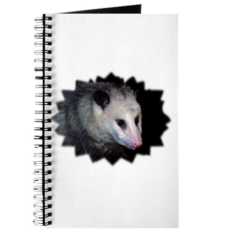 Awesome Possum Journal